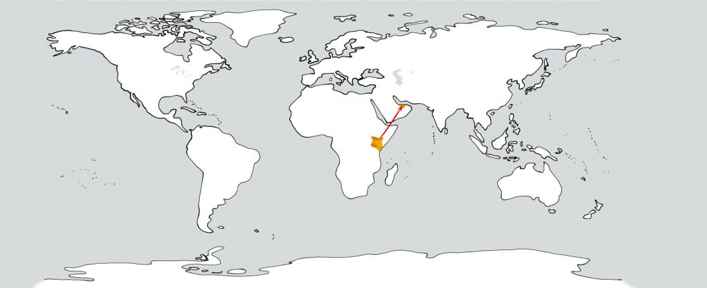 Eine weiße Weltkarte mit zwei goldenen Flecken in der Position von Kenia und den Vereinigten Arabischen Emiraten. Ein roter Pfeil führt vom ersten zum zweiten.