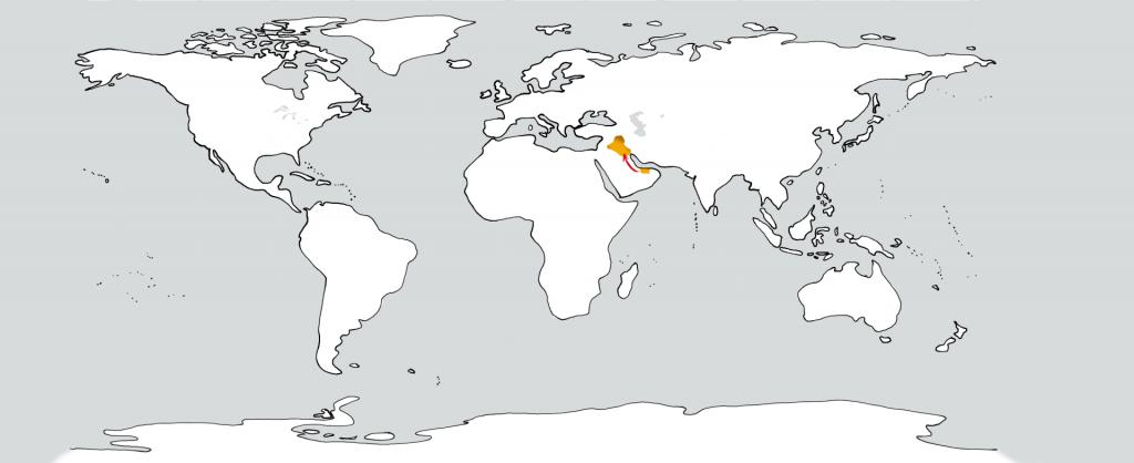 Eine weiße Weltkarte mit zwei goldenen Flecken in der Position der Vereinigten Arabischen Emirate und dem Irak. Ein roter Pfeil führt vom ersten zum zweiten.