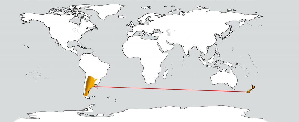 Eine weiße Weltkarte mit zwei goldenen Flecken in der Position Neuseelands und Argentiniens. Ein roter Pfeil führt vom ersten zum zweiten.