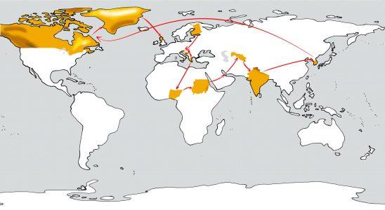 Weltkarte mit unserer Reiseroute