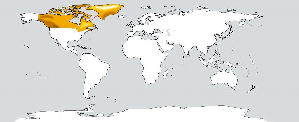Weltkarte Kanada nach Grönland